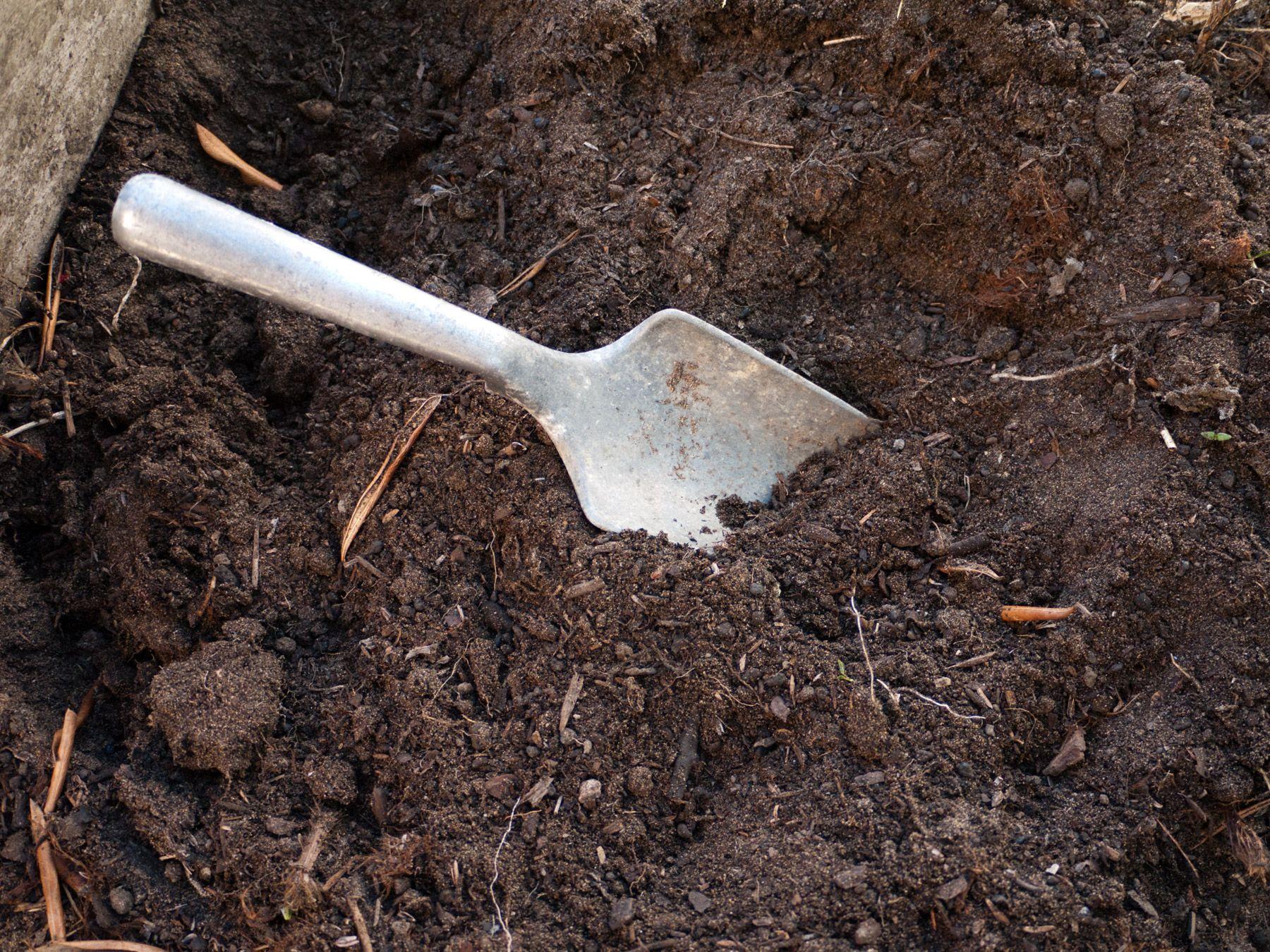 Garden planning Test your soil for lead Soil testing