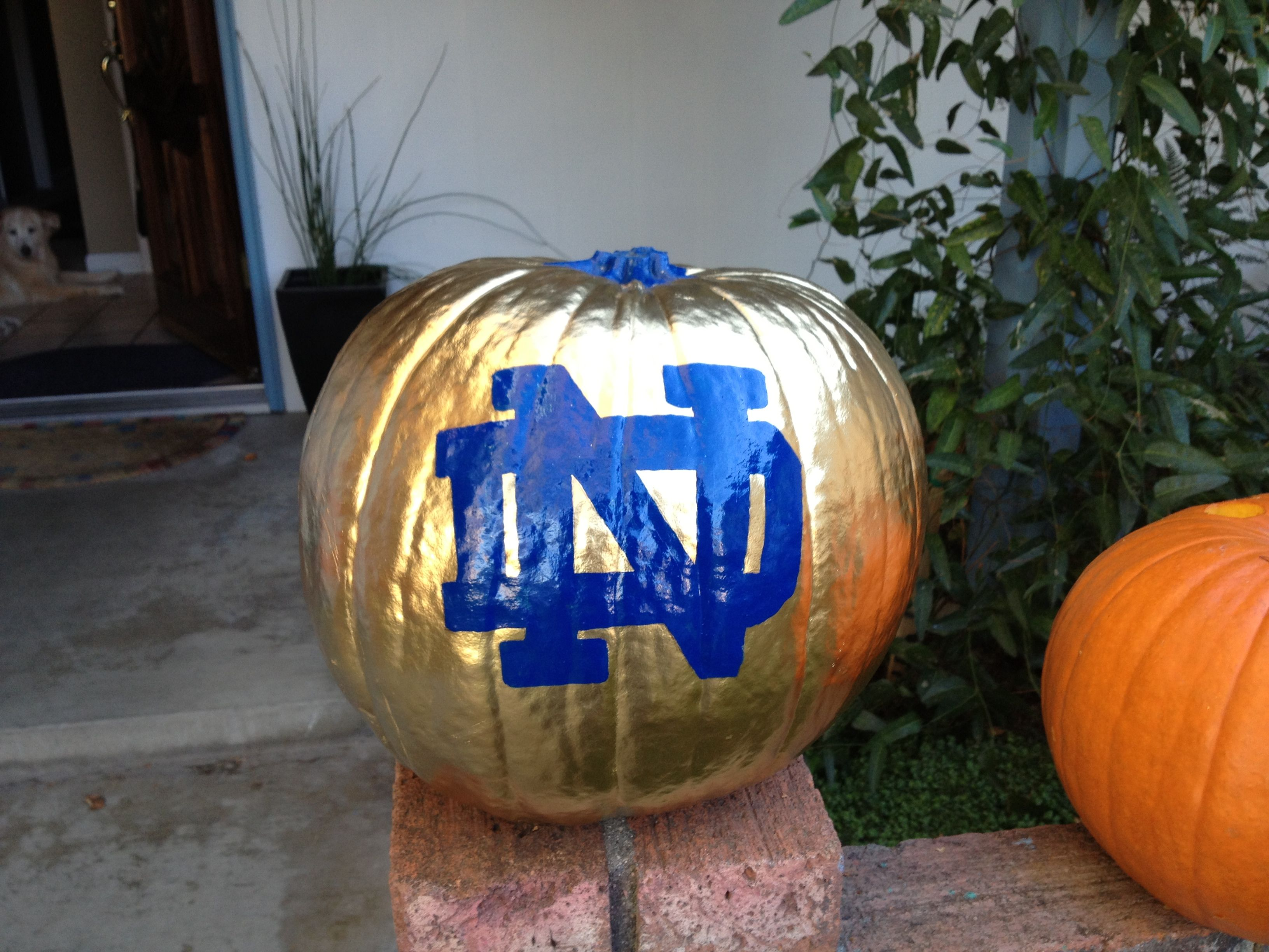 College Football Pumpkin Carving Patterns Www Topsimages Com