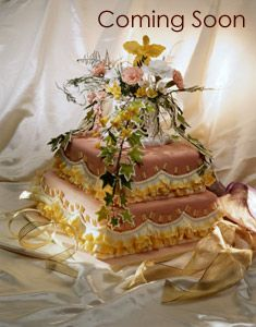 Jaquettes Bakery Broomall Pa Professional Cake Services Strawberry Shortcake 200 For Wedding