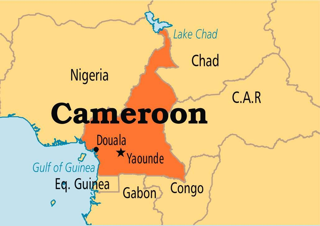 Cameroon is located in western Africa and features over 240 spoken