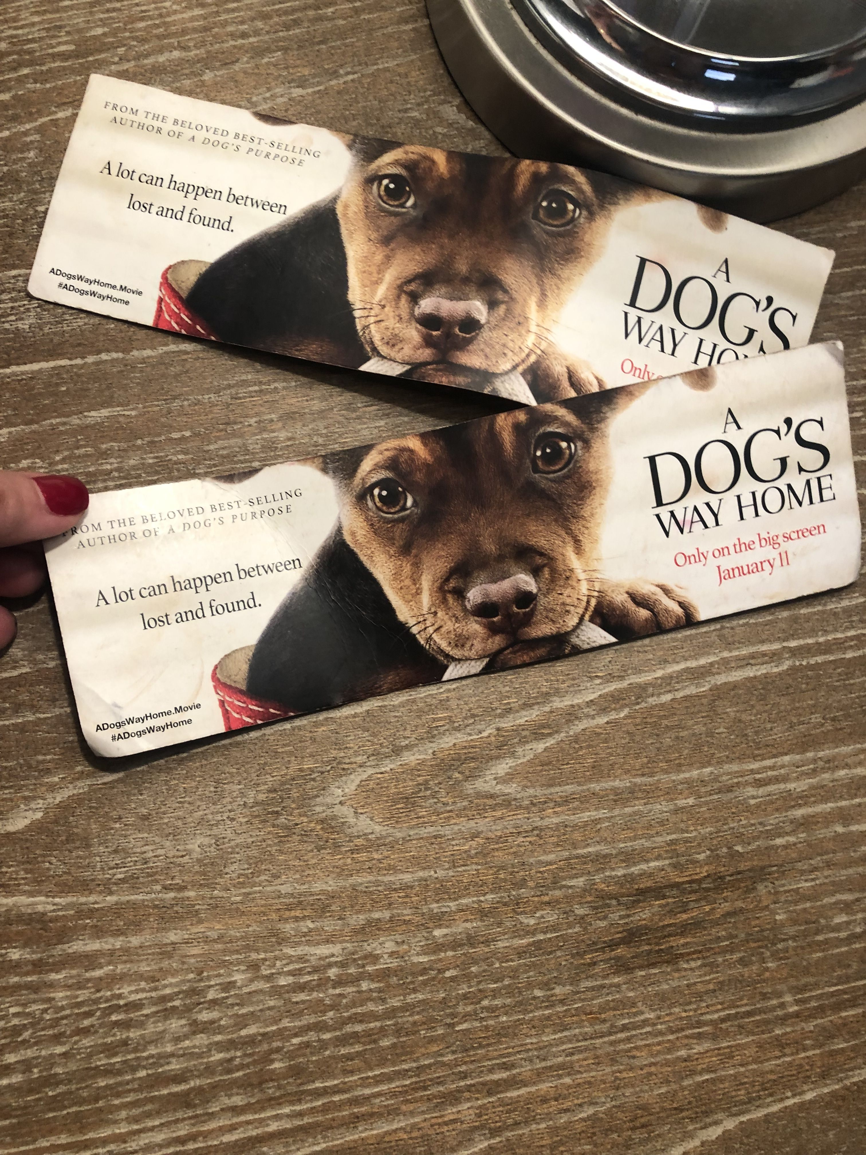 Check Out These Cute A Dog S Way Home Bookmarks So Excited That A