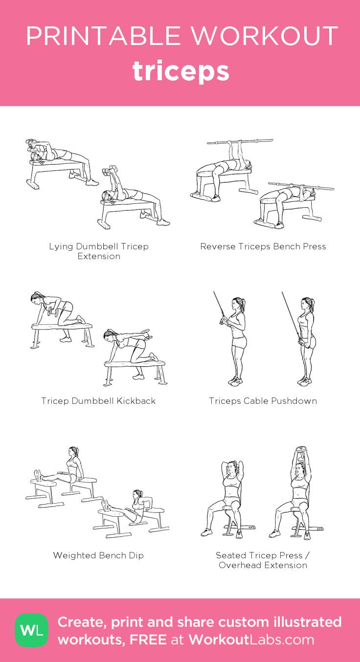 Workouts | Muscle & Fitness