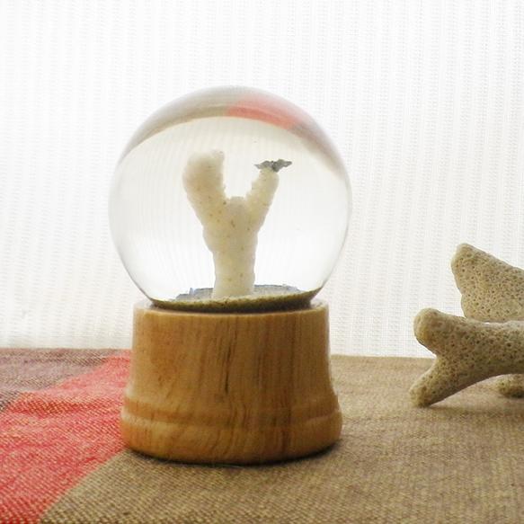 漂着物を閉じ込めたスノードームです。波に磨かれた貝殻やガラスの欠片に、砂がゆっくり舞い降ります。世界に二つとない「砂ドーム」を是非、手に取って眺めてみてくださ...|ハンドメイド、手作り、手仕事品の通販・販売・購入ならCreema。