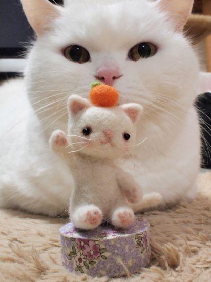 超かわいい羊毛フェルトの白猫ちゃん♪ うらばなし。