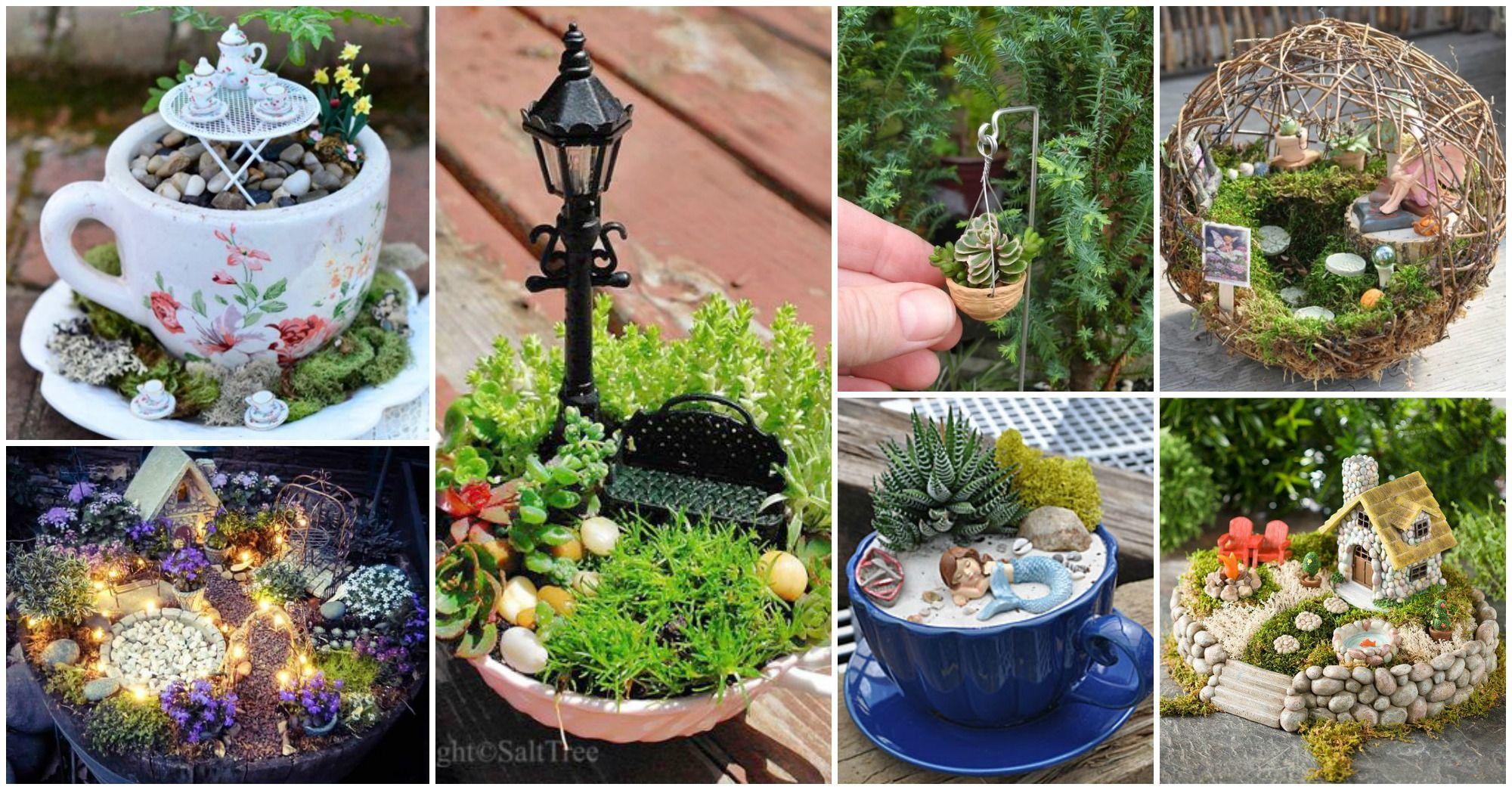 Proyectos Para Crear Jardines De Interior En Miniatura Garden