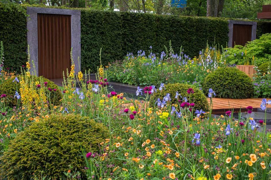Superior The Homebase Garden At The RHS Chelsea Flower Show 2015 / RHS Gardening