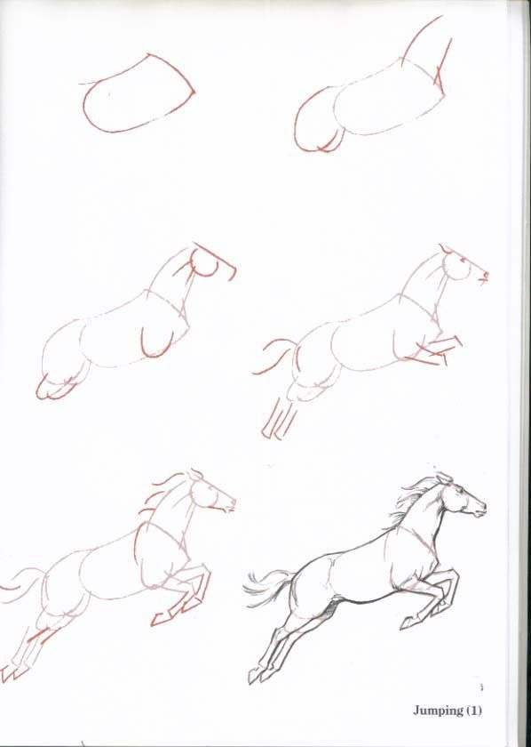 How-To-Draw-Horses - ~*Horse Heaven*~ | Drawing Horses | Pinterest ...