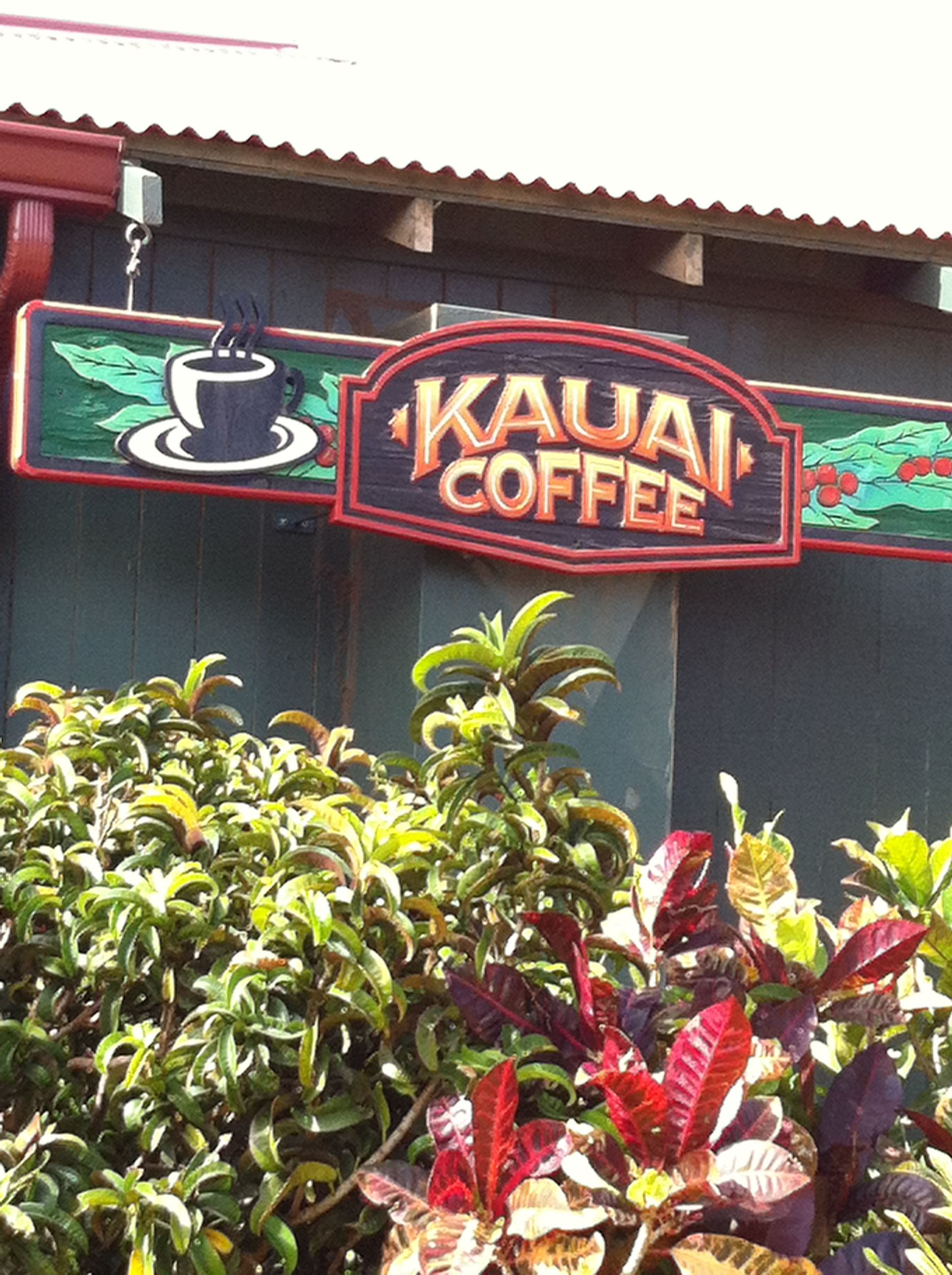 Pin by Kakki Ledyard on Kauai, HI (With images) Neon