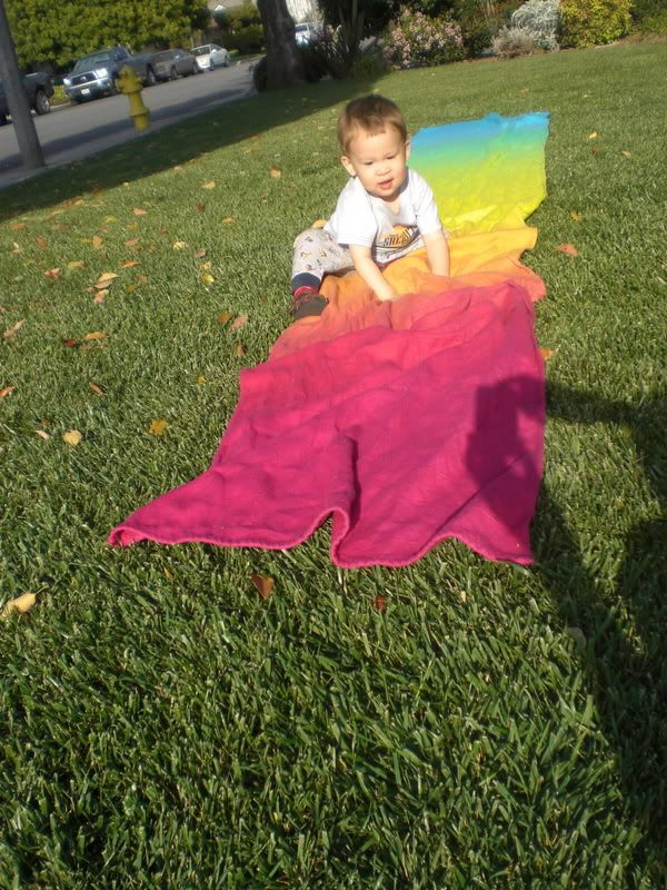 Hand Dyed Woven Wrap Dying Info And Strategies Babywearing
