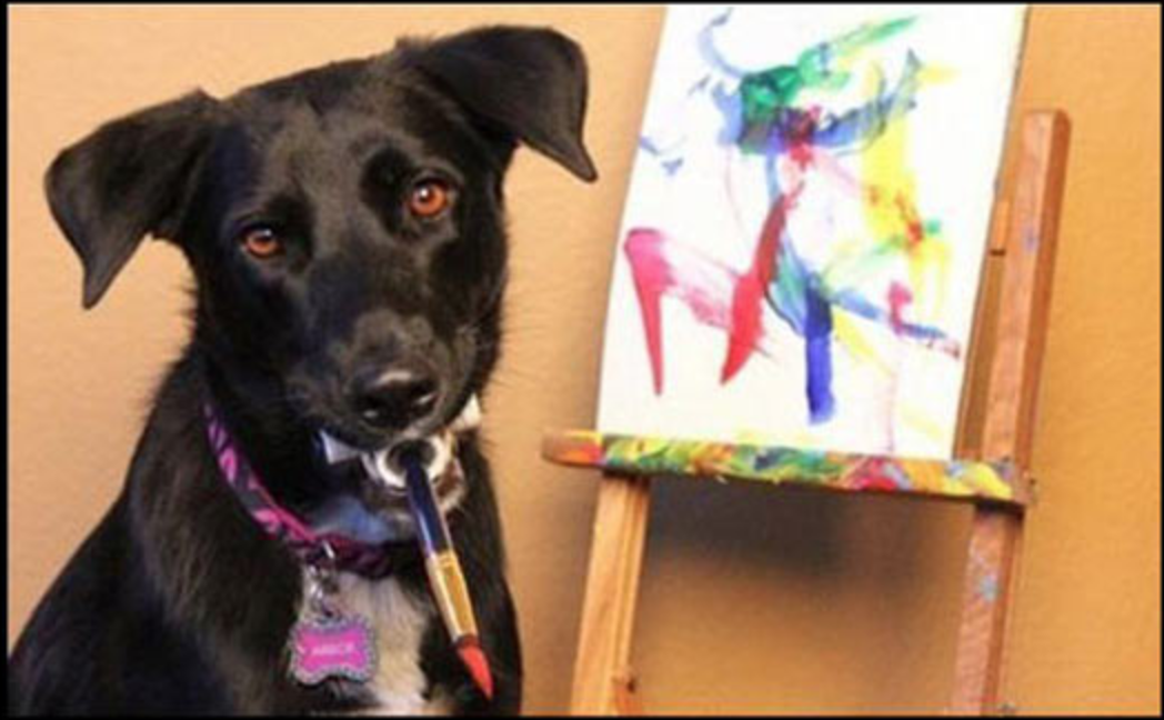 This Talented Rescue Dog From Las Vegas Loves To Paint