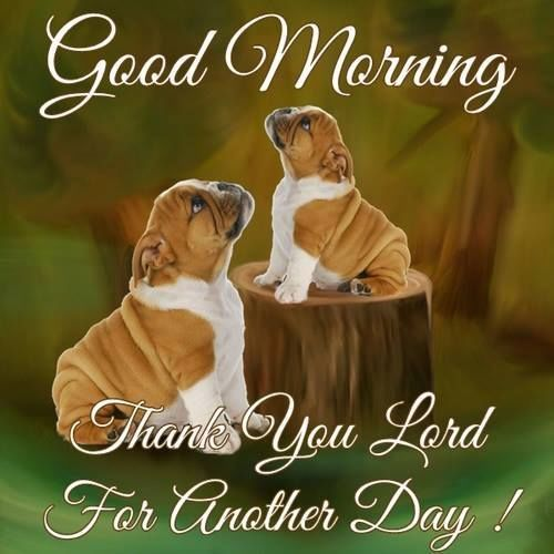 Good Morning Thank You Lord For Another Day good morning good morning quotes cute good morning quotes positive good morning quotes good morning quotes for friends religious good morning quotes good morning blessings quotes jesus good morning quotes