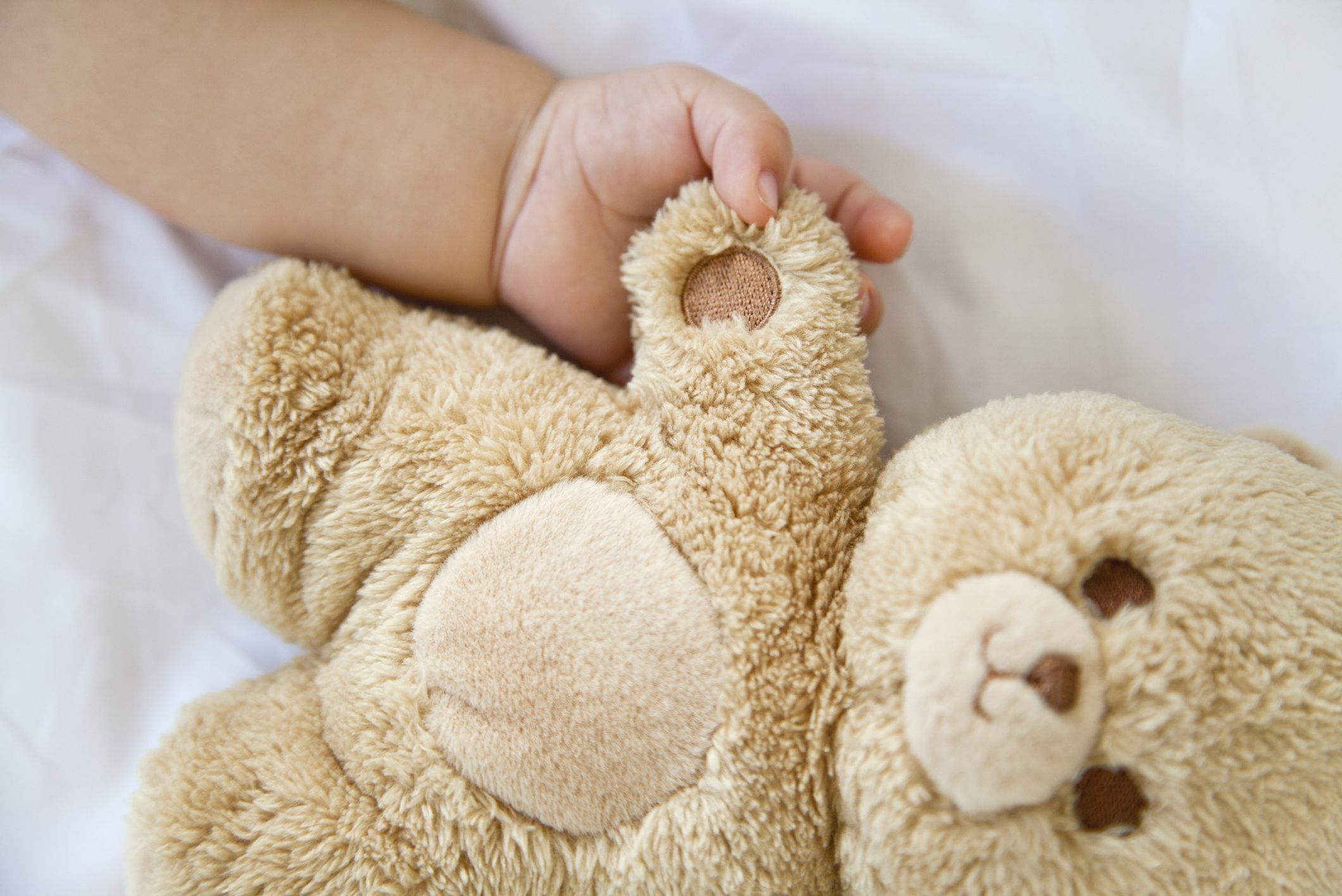 10 Adorable Teddy Bear Sewing Patterns To Make For Your