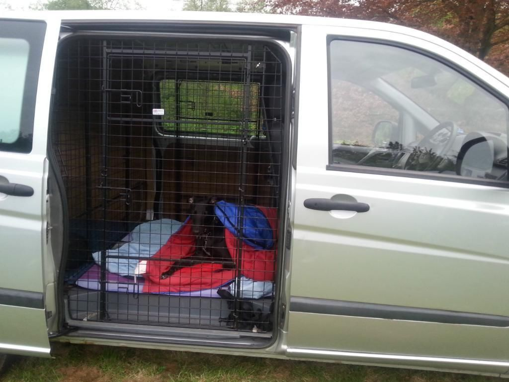 Dog cages Custom Barjo dog cages for Mercedes Vito van on