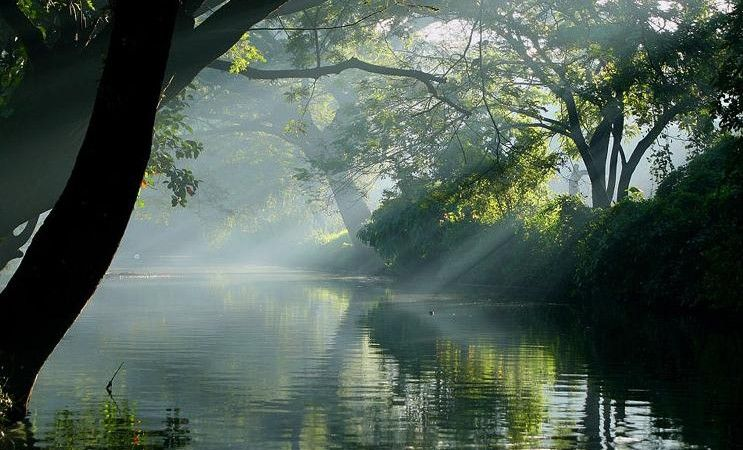 Most Beautiful Places In The Kerala Google Search Kerala Pinterest Kerala And Beautiful