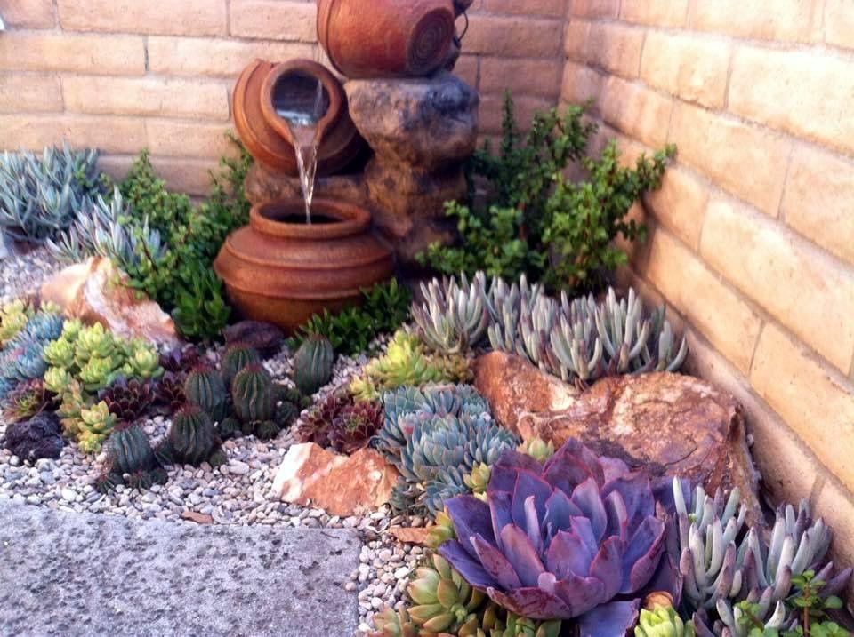 Backyard Cactus Garden pinandrè engels on tuin in 2018 | pinterest | succulents garden