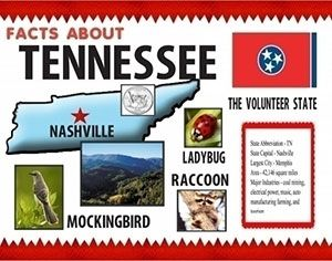 make a poster about facts of tennessee poster school project poster ideas