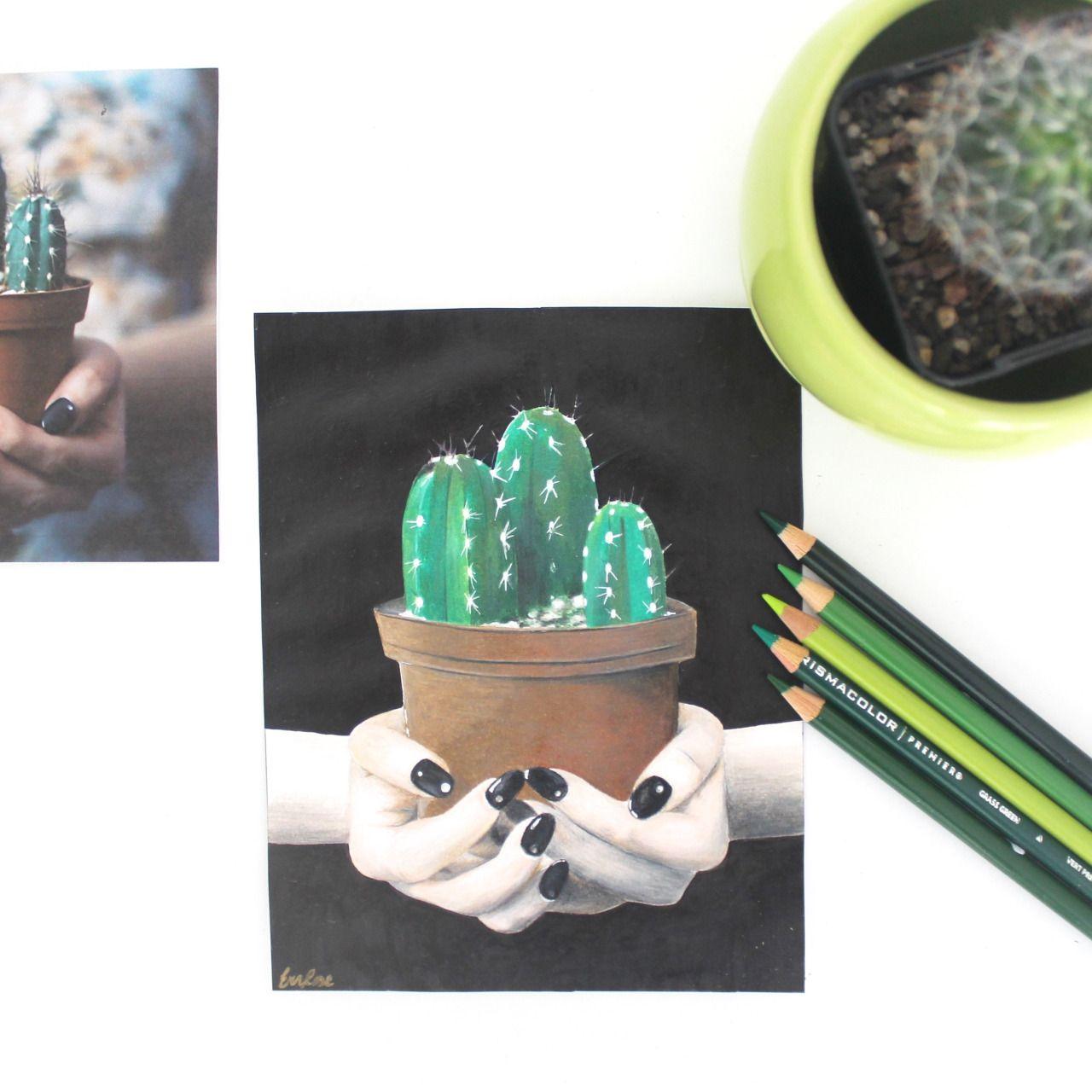 Cactus drawing. More info: https://www.instagram.com/p/BC3t1Z5NBC_/ Blog: http://bobblegary.blogspot.com.au/