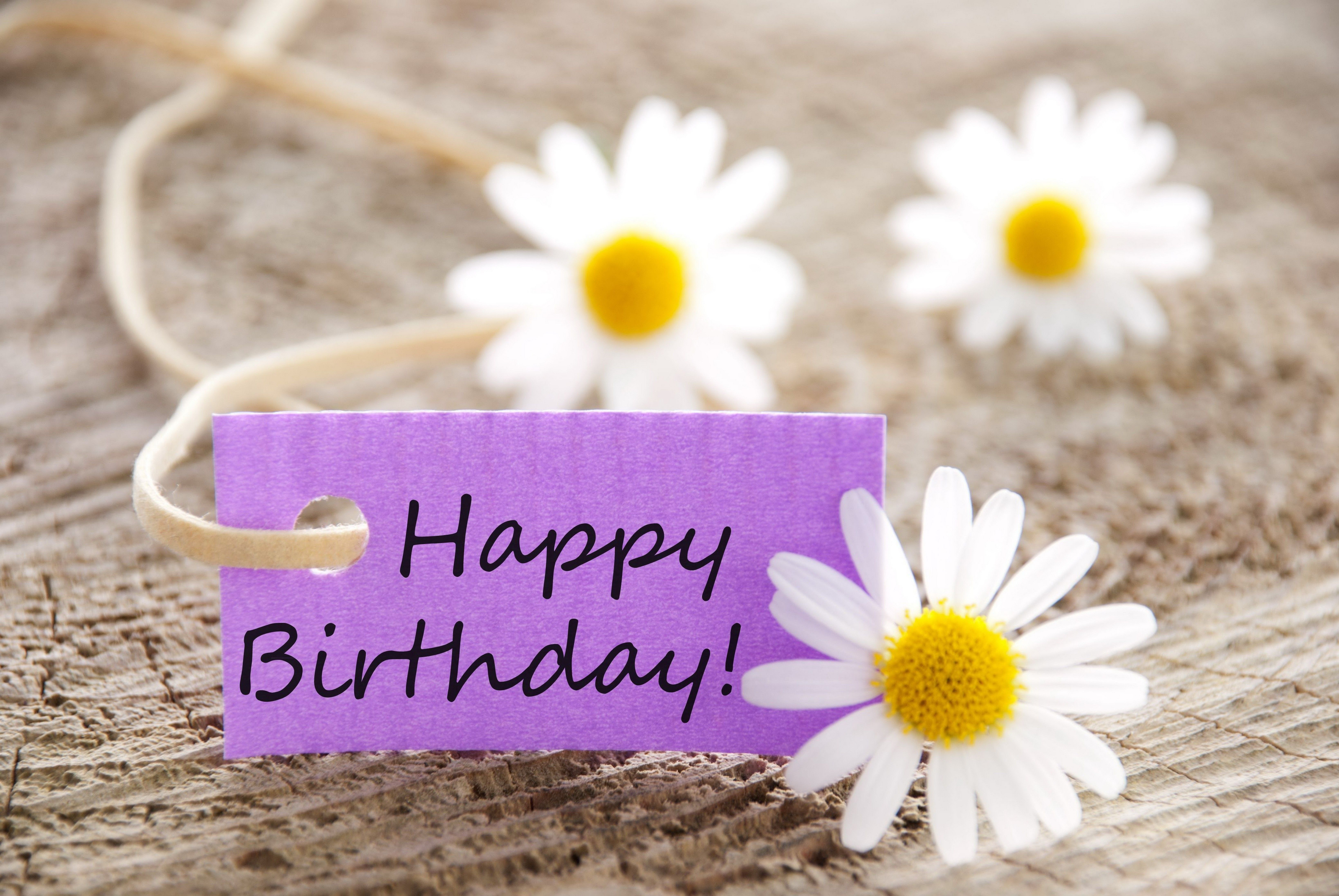 Hd wallpaper birthday - Happy Birthday Wallpaper Hdwplan Hd Wallpapers Pinterest Happy Birthday Wallpaper Hd Wallpaper And Wallpaper
