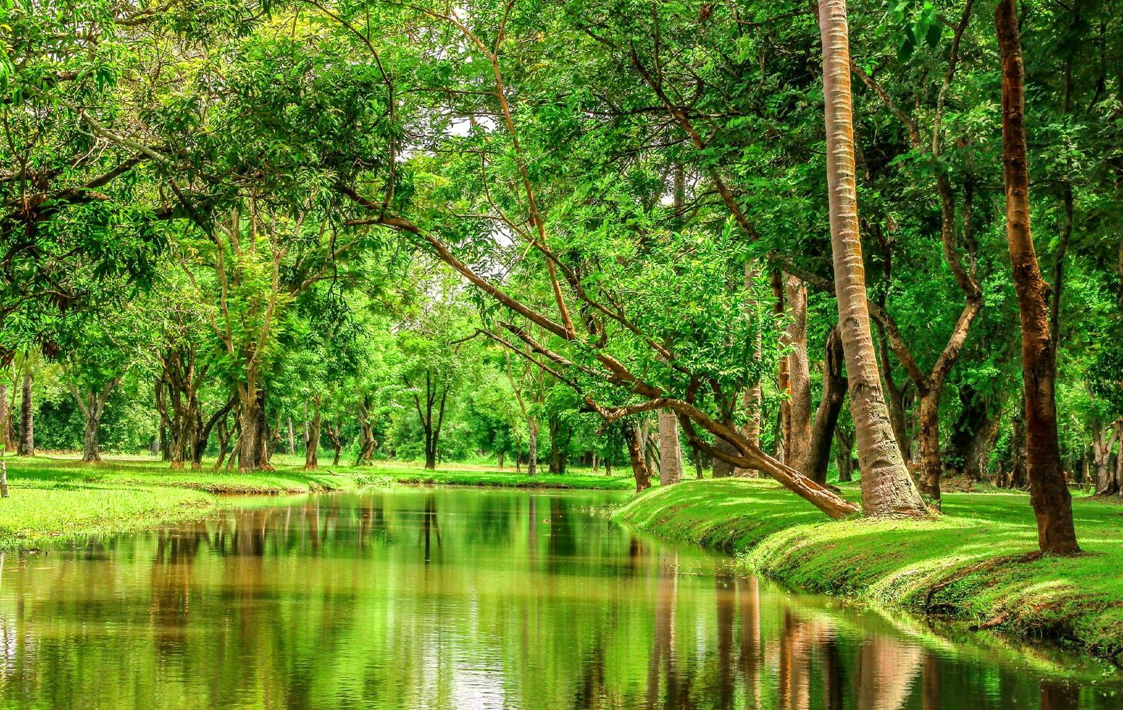 Mindblowing Hd Widescreen Nature Wallpapers Ginva Nature Images Hd Nature Nature Images