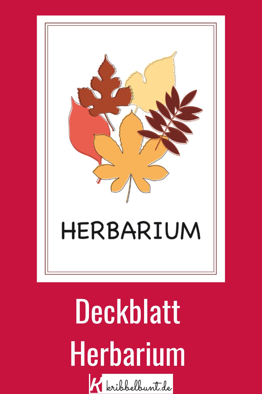 Vorlagen Fur Ein Herbarium 2