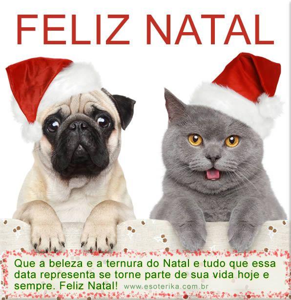 Feliz Natal Feliz Natal Mensagem Feliz Natal Cão De Natal