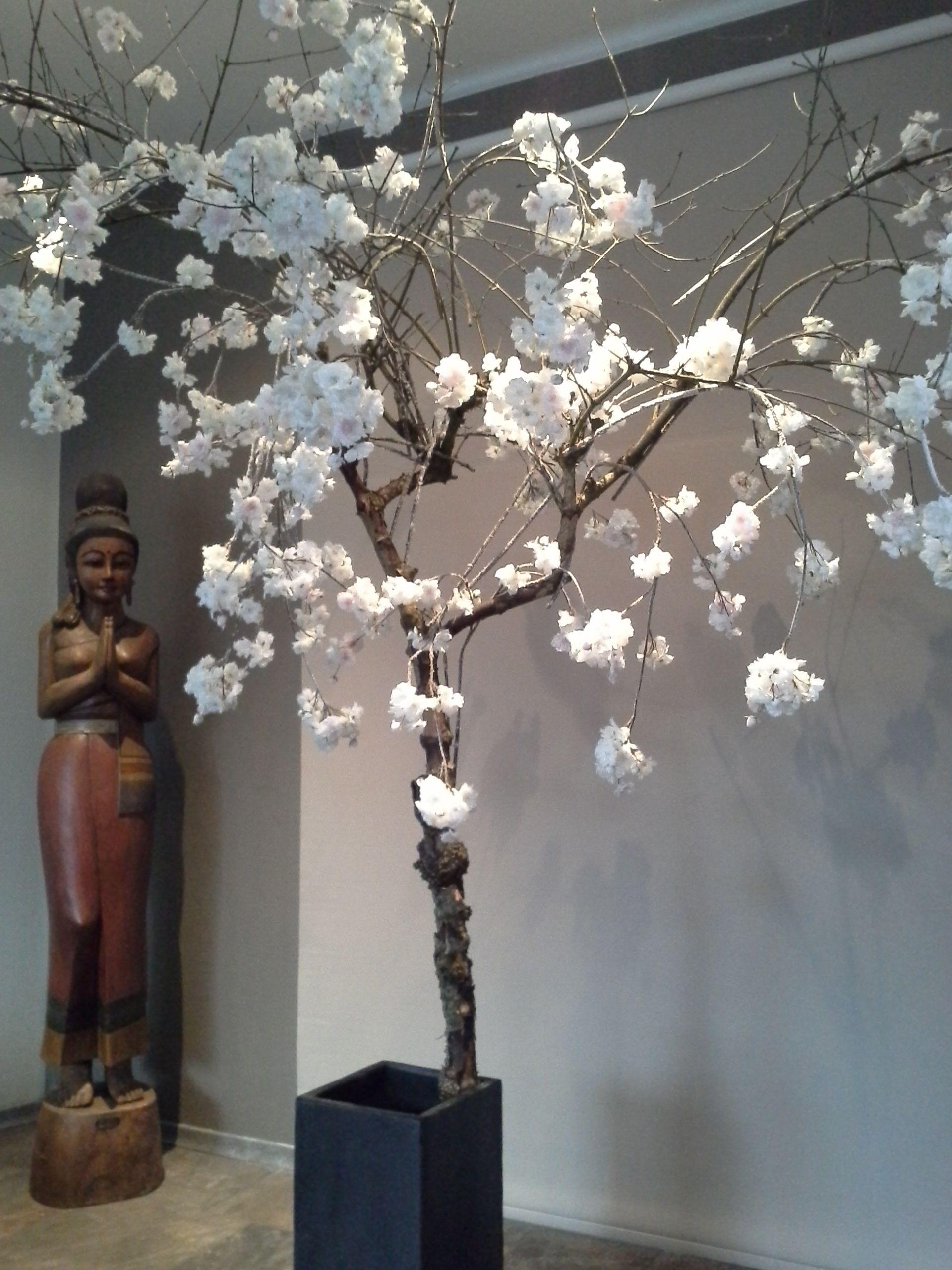 bloesemboom voor bruiloft - bloesemboom japanse kers - interieur, Deco ideeën