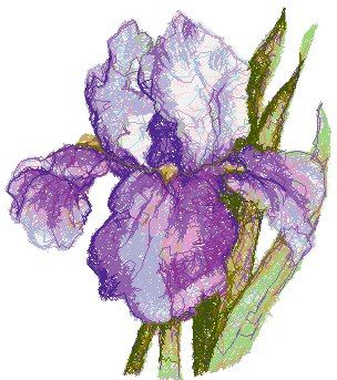 Iris Advanced Embroidery Embroidery Designs Flower Embroidery Designs