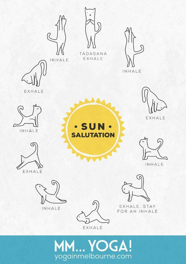 Free Download Sun Salute Wall Chart Featuring Kitties Mm Yoga Yoga For Kids Cat Yoga Morning Yoga