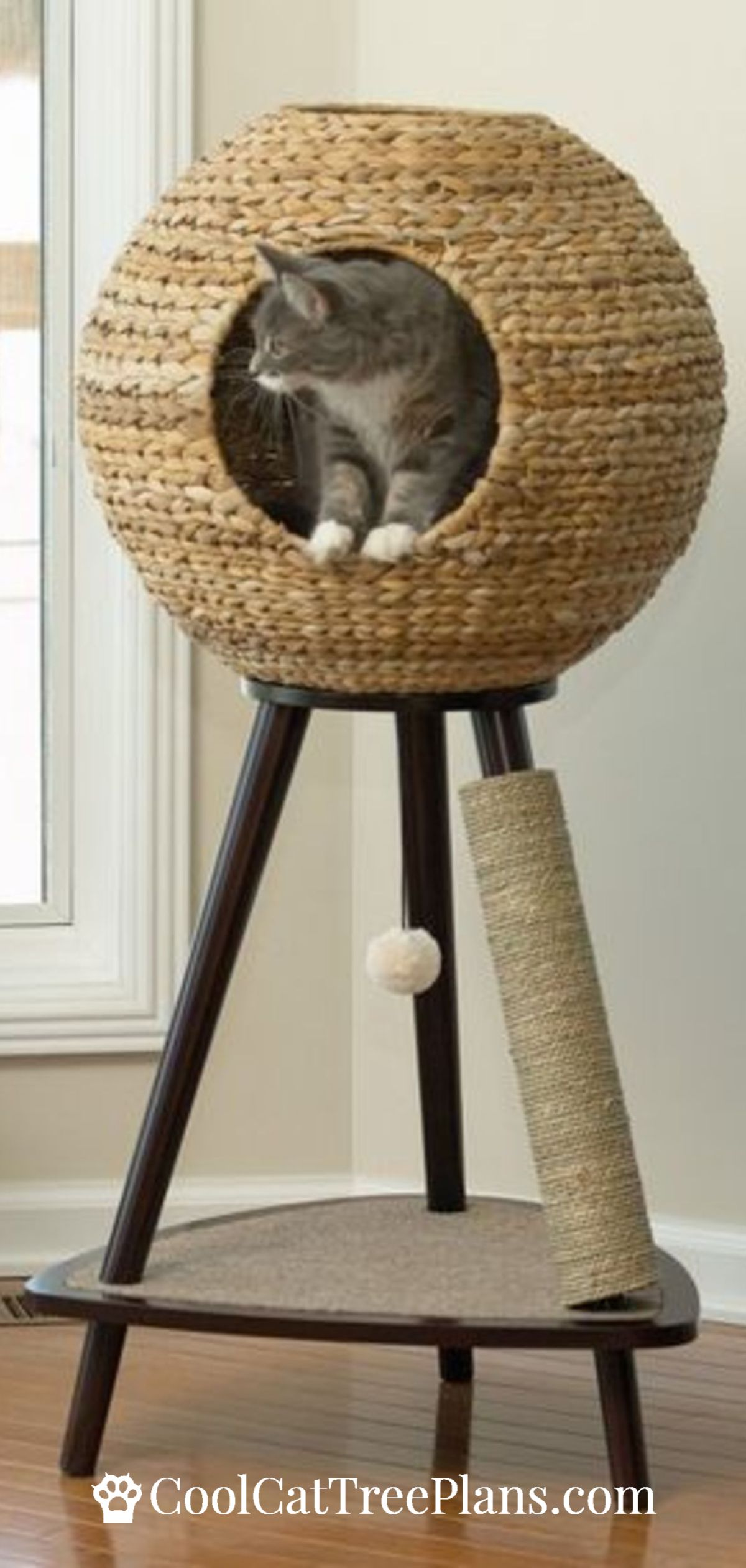 Modern cat furniture doesnt need carpet to make cats happy this makes people
