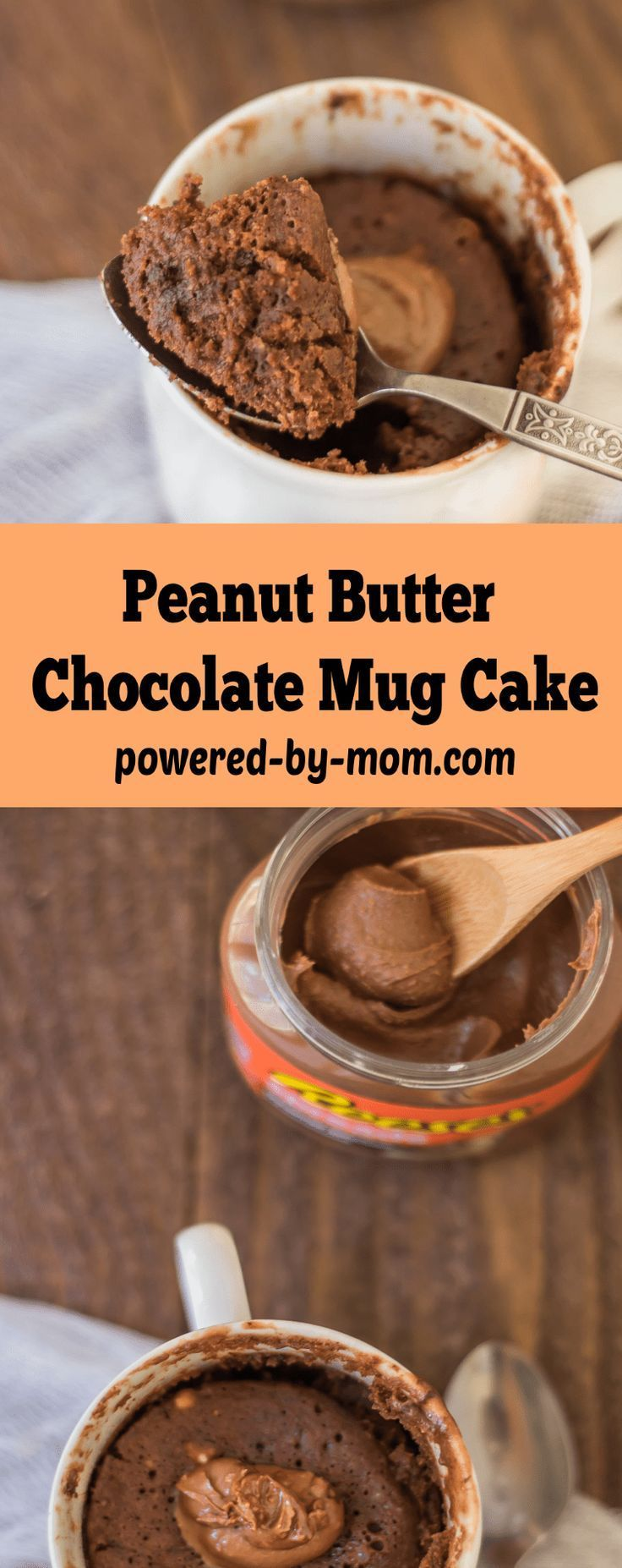 Chocolate Peanut Butter Mug Cake that is oh so yummy but ...