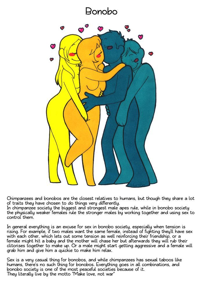Different types of loving in the Animal Kingdom - Imgur