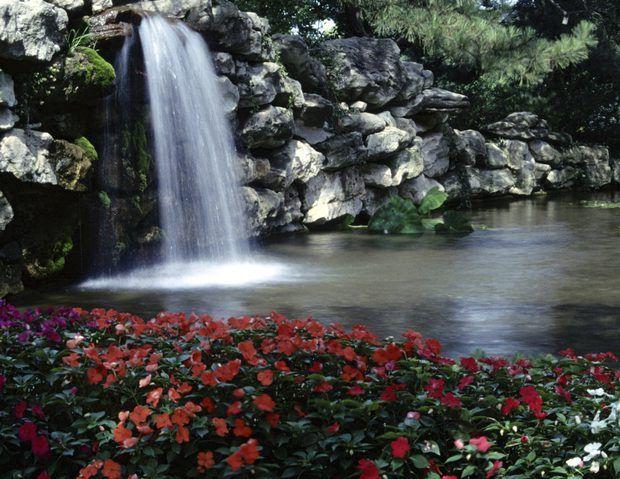 Cascada de jardín con caída de rocas para el patio trasero Pinterest