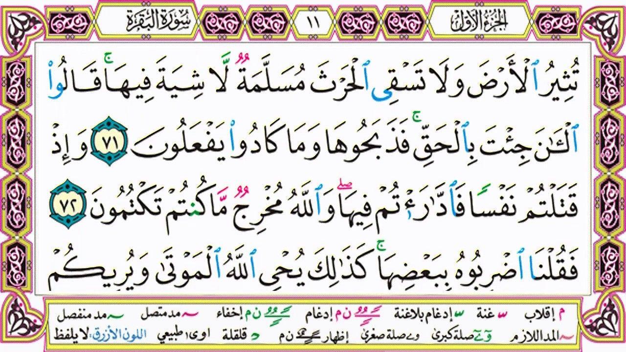 القرآن الكريم مقسم صفحات الشيخ حاتم فريد سورة البقرة صفحة 11 مكتوب Arabic Calligraphy Quran