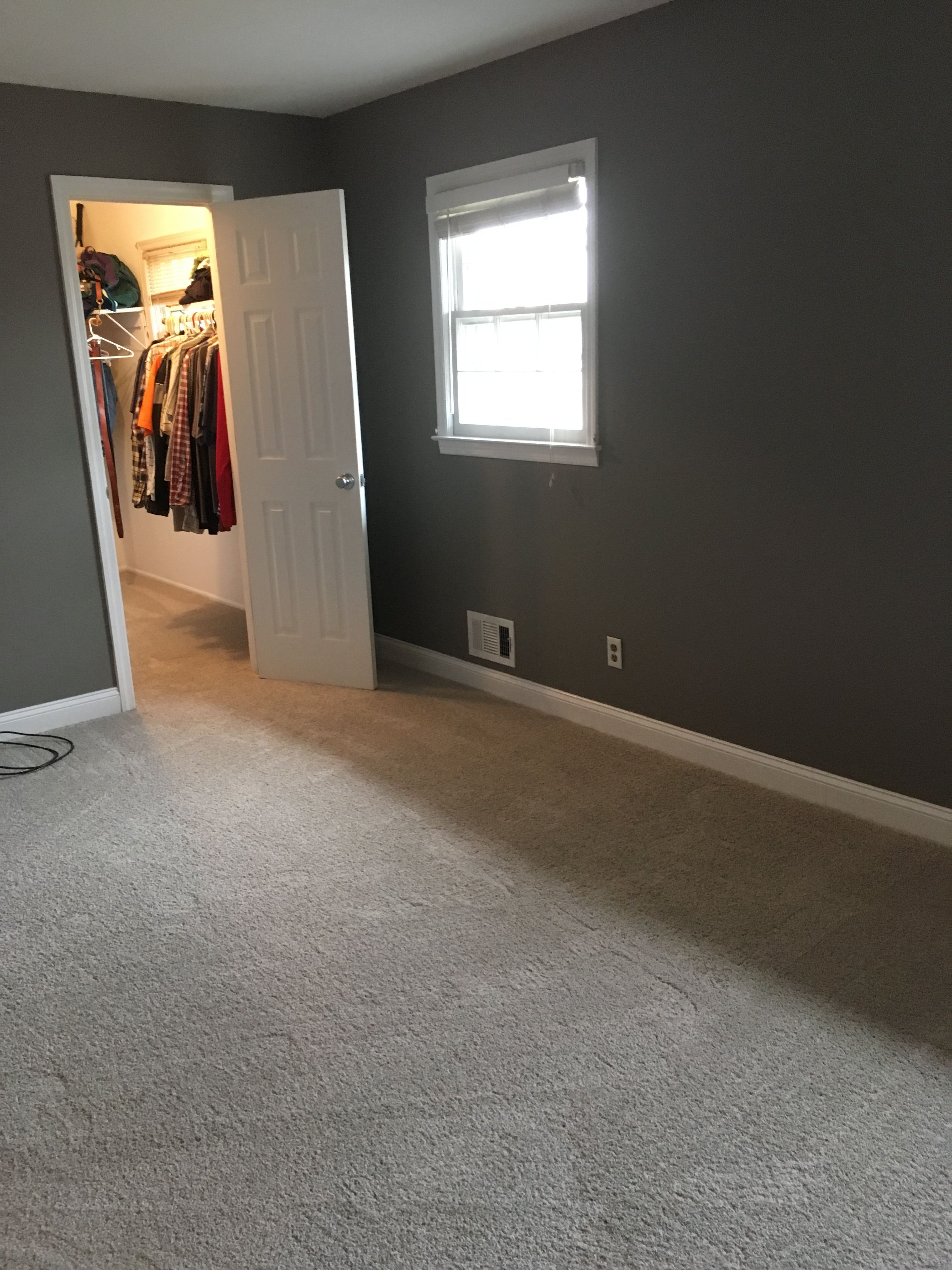 Galveston gray walls and gray carpet Gray Carpet, Master Bedroom Makeover, Gray Walls,