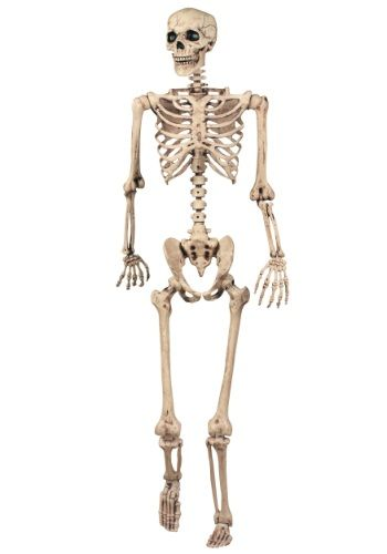 Lifesize Poseable Skeleton - we could borrow all of the wedding - life size halloween decorations