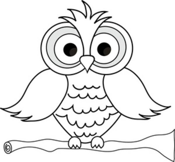 Owl Coloring Pages For Adults Wise Owl With Big Eyes On A Tree Limb In Black And White Smu Imag Owl Coloring Pages Cartoon Coloring Pages Bird Coloring Pages
