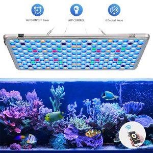 Bozily Aquarium 300w Light Aquarium Lighting Light App Reef Lighting