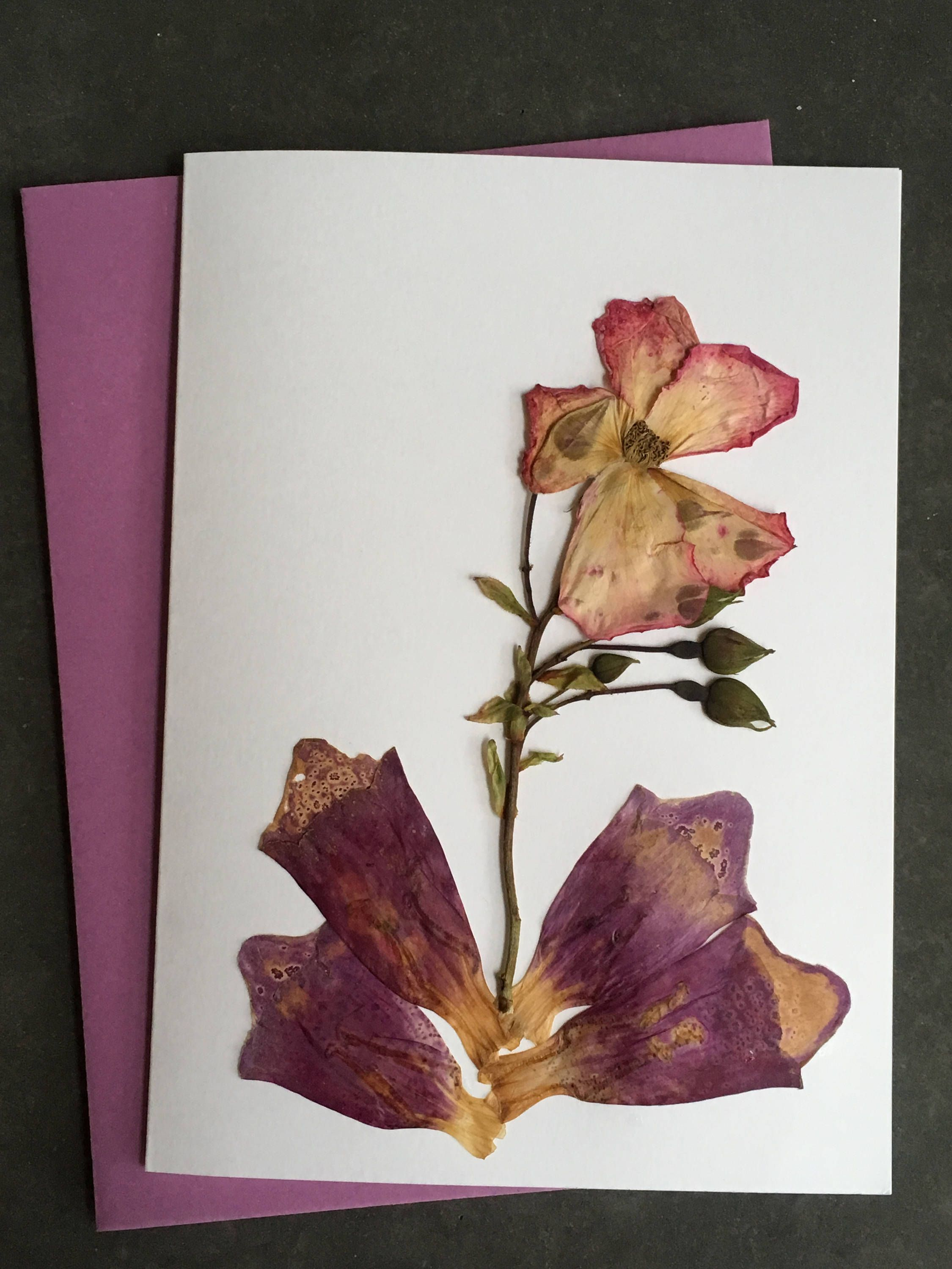 Pressed Flower Card  Greetings Card for all Occasions