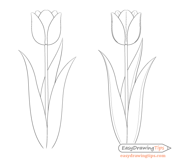 Easy Tulip Drawing Step By Step Easydrawingtips Tulip Drawing Step By Step Drawing Flower Drawing
