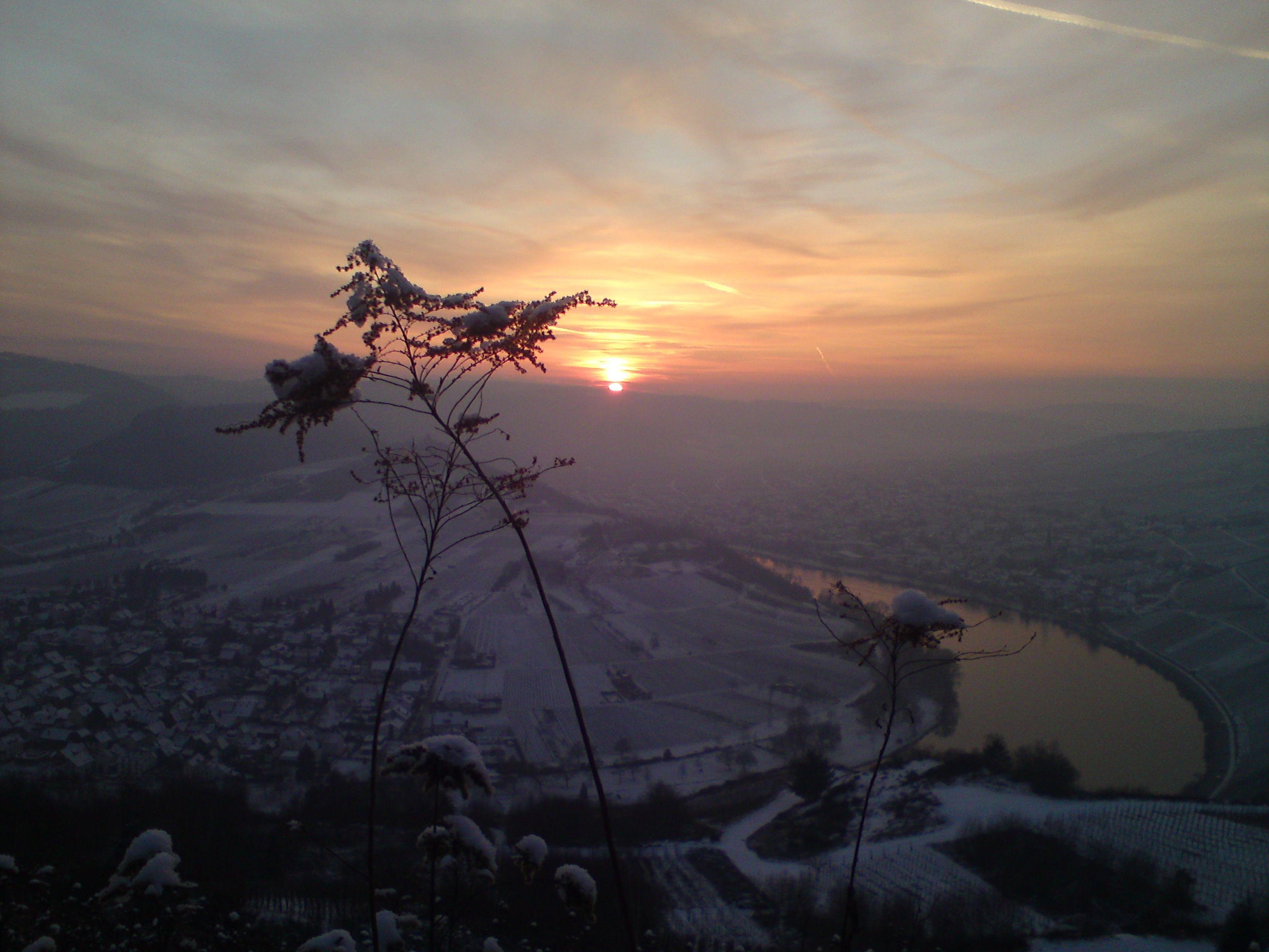 Uitzicht over de Moezel - Kröv