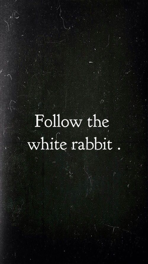 Down The Rabbit Hole  on We Heart It