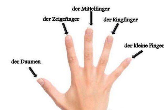 No hay descripción de la foto disponible. Learn deutsch