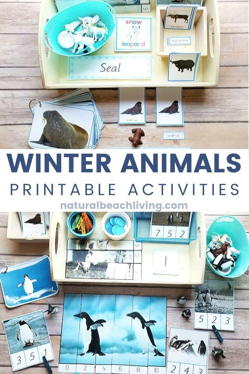 Winter Animals Preschool Theme Activities - Natural Beach Living