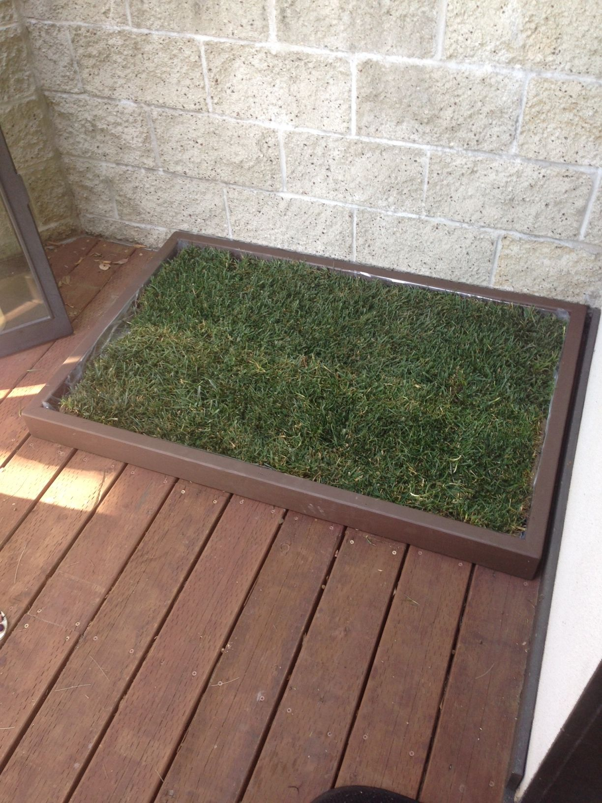 doggy and the city large dog litter box looks great on this deck