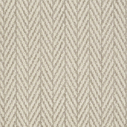 Shop Stainmaster Active Family Apparent Beauty Plaza Taupe Carpet
