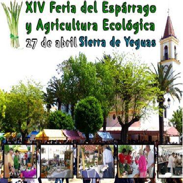 XIV FERIA DEL ESPÁRRAGO Y AGRICULTURA ECOLÓGICA ecoagricultor.com