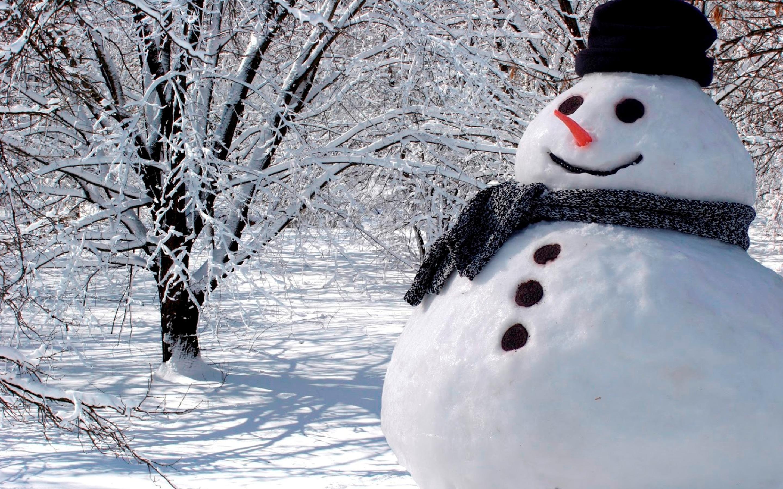 white-real-snowman-wallpaper-hd (2880×1800) | greetings season