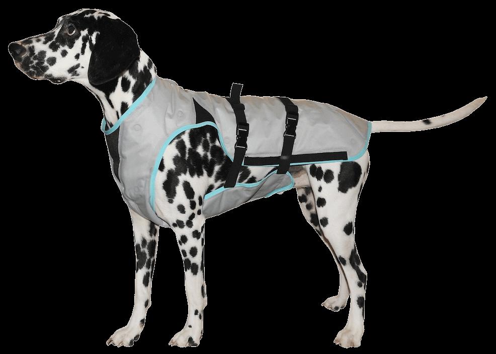 Dry Cooling Vest Dogs Dog Vest Cooling Vest
