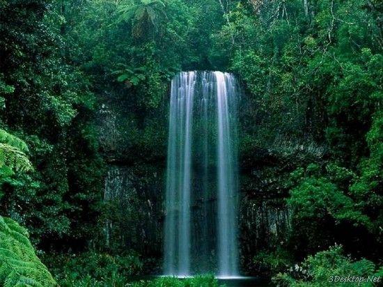 Water transforms