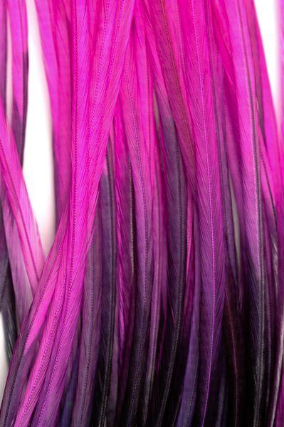 Mèche de cheveux en plumes bicolores noires et fuchsias : http://www.plumes.fr/produit/10-plumes-extensions/181-plume-naturelle-avec-microtubes/1725-plume-bicolore-25-35-cm-noir-fuchsia